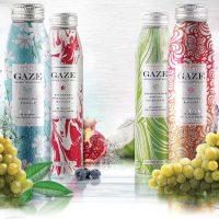 Gaze2